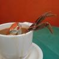 Image of Asian Coconut And Crab Soup Recipe, Group Recipes